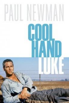 Cool Hand Luke (1967) คนสู้คน